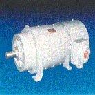 Kinamatic® Explosion Proof AC Motors